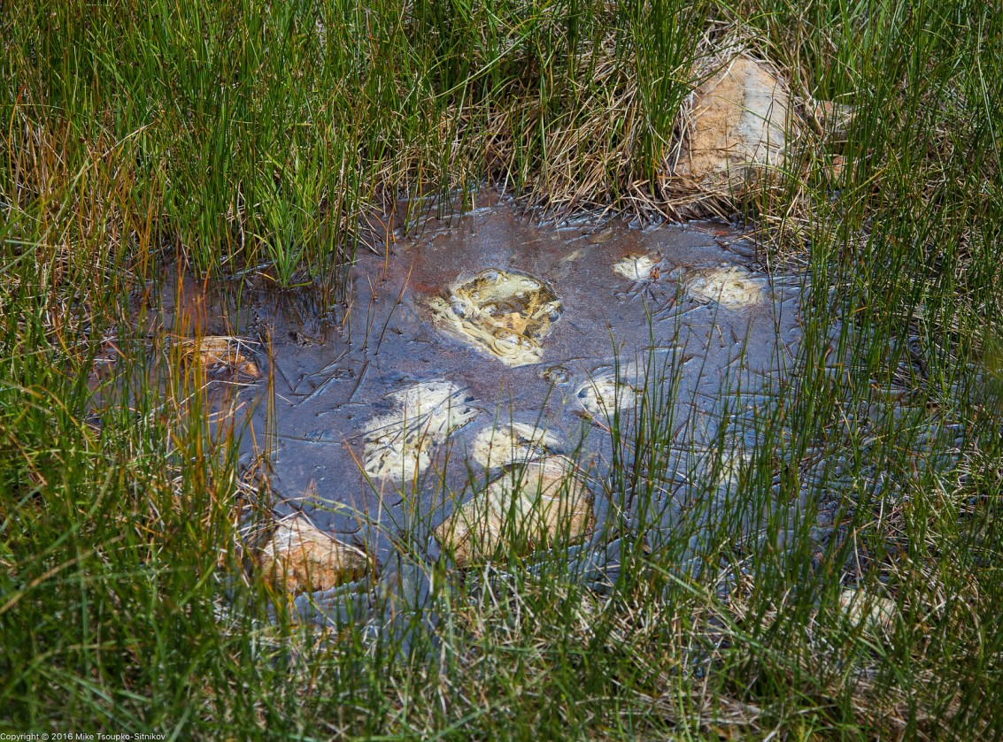 Sulfur pits off Ridge Lake Trail