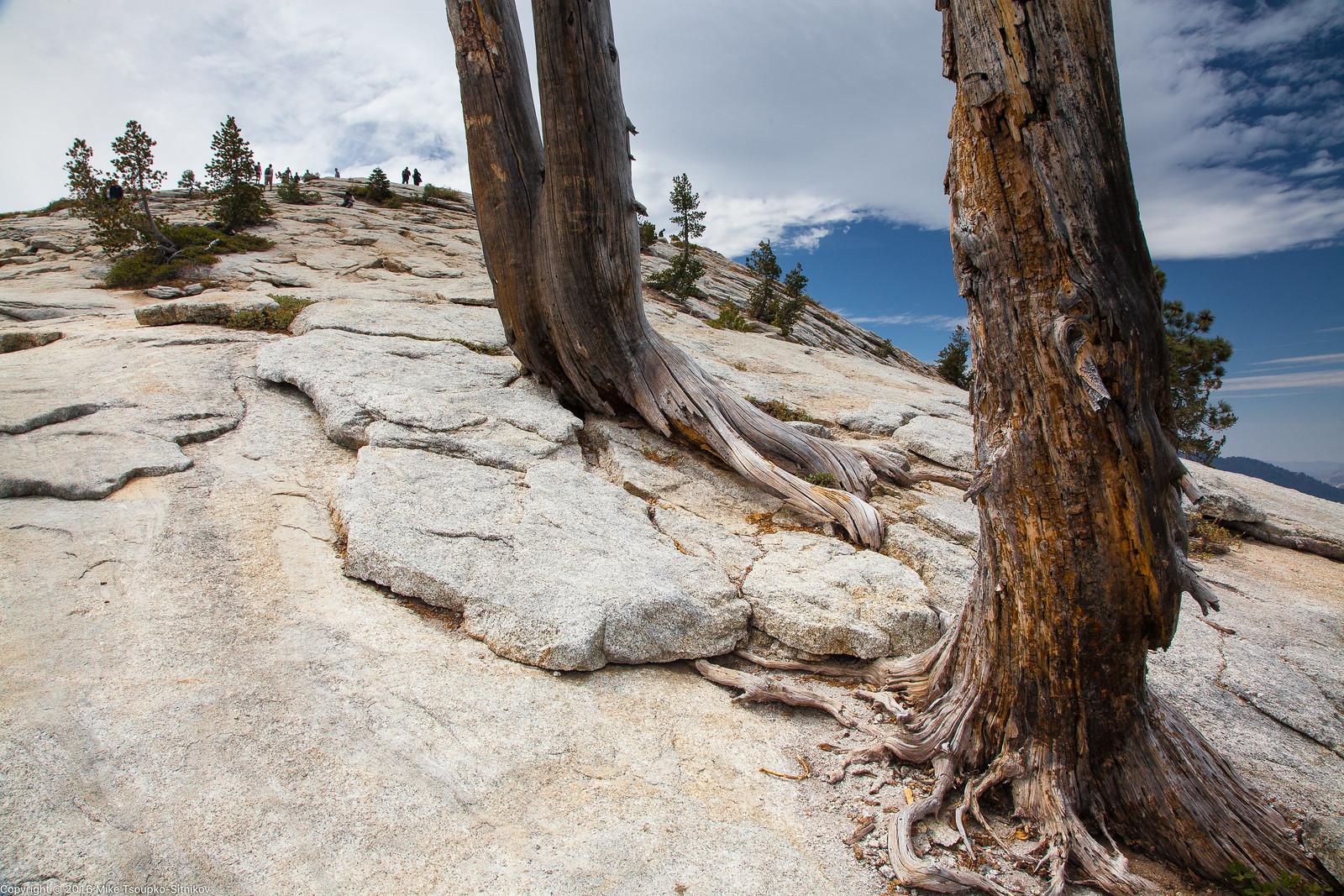 Sentinel Dome in Yosemite